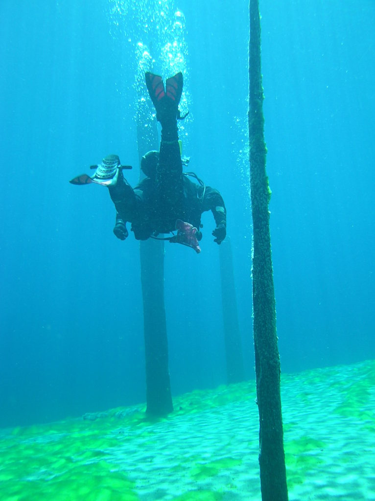 Diving in Clear Lake