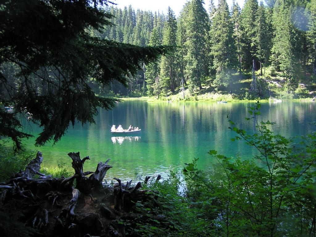 Clear Lake - Pool North of Lodge Boat Ramp - Oregon Dive Sites